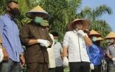 Kontrak Farming Penanaman Padi PT. SPM bersama UPJA Bina Karya