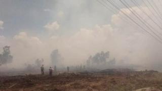 Diguga Dibakar, Sekitar Dua Hektar Lahan Konsesi PT Chevron di Dumai Terbakar
